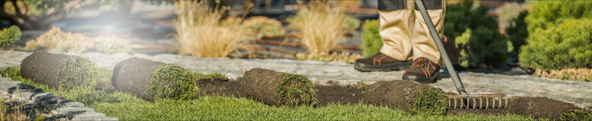 Rolki trawy