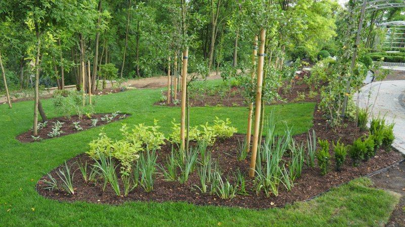 zakładanie ogrodów pielęgnacja 06