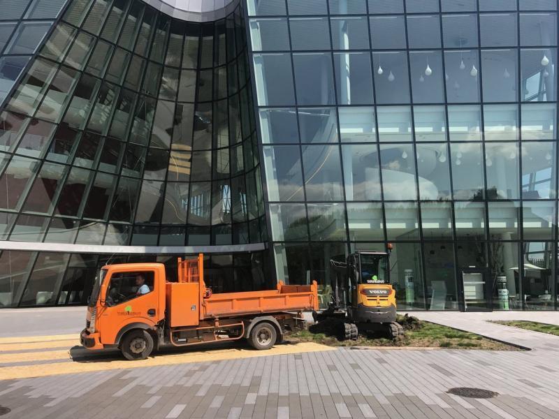 rok-2017-zagospodarownaie-terenu-zielengo-dla-centrum-kongresowe-ice-6