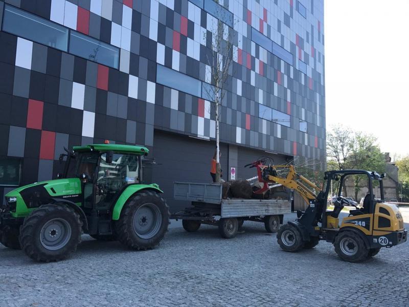 rok-2017-zagospodarownaie-terenu-zielengo-dla-centrum-kongresowe-ice-8