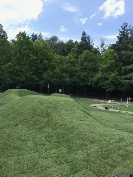 rok-2018-rozoenie-trawy-z-rolki-dla-miasta-sosnowiec-1
