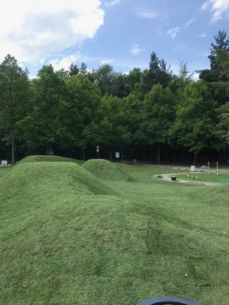 rok-2018-rozoenie-trawy-z-rolki-dla-miasta-sosnowiec-2