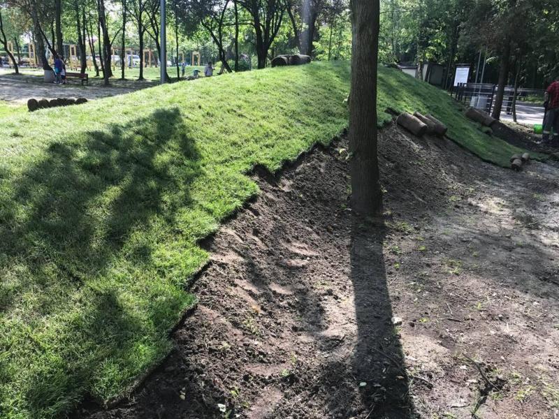 rok-2018-rozoenie-trawy-z-rolki-dla-miasta-sosnowiec-5