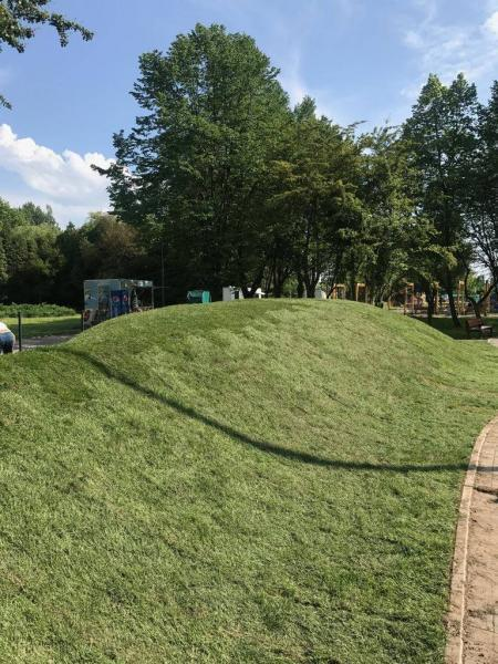 rok-2018-rozoenie-trawy-z-rolki-dla-miasta-sosnowiec-6
