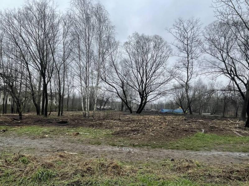 rok-2021-czyszczenie-dziaki-przy-ulsodowej-w-krakowie-7